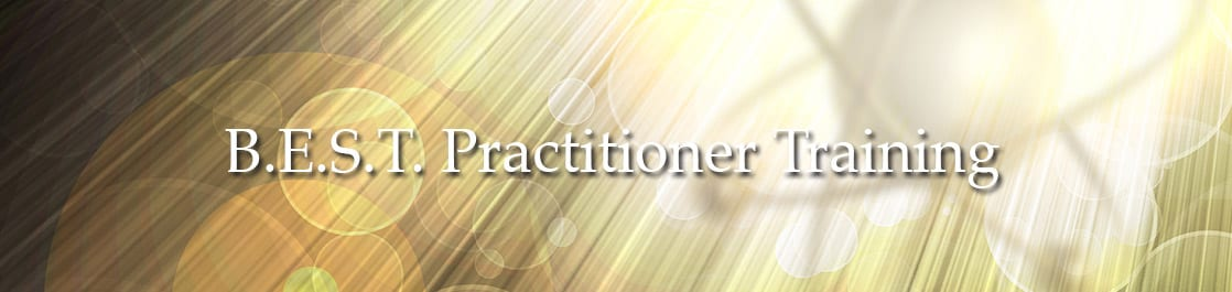 B.E.S.T. Practitioner Training
